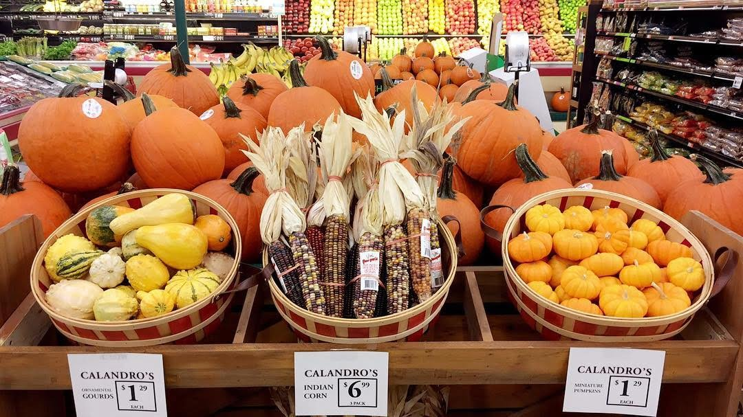 Preparing for fall and Halloween? Stop by our Mid-City location for decorative Indian corn, miniature…